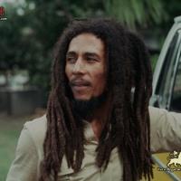 Bob Marley Jamming Artwork