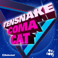 Tensnake Coma Cat Artwork