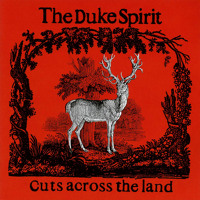 The Duke Spirit Love is an Unfamiliar Name Artwork