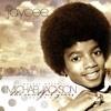 Michael Jackson  The Soulful Years