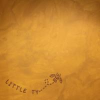 Little Tybee Nero Artwork