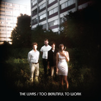 The Luyas Too Beautiful To Work Artwork