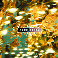 Asobi Seksu Sighs Artwork