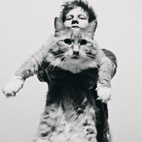 Ed Sheeran The A-Team (KOAN Sound Remix) Artwork