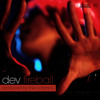 Dev - Fireball ft. The Cataracs