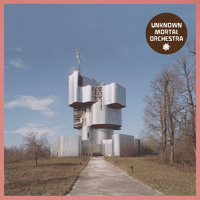 Unknown Mortal Orchestra Ffunny Ffrends Artwork