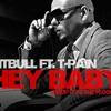 Hey Baby Drop It To The Floor - DJ Prithvi Remix Pitbull Ft. T-Pain