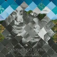 Cymbals Eat Guitars Definite Darkness Artwork