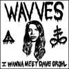 Free Download Wavves - I Wanna Meet Dave Grohl Mp3