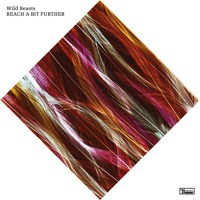 Wild Beasts Thankless Thing Artwork