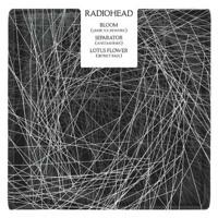 Radiohead Lotus Flower (SBTRKT Remix) Artwork