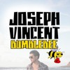 Bumble Bee - Joseph Vincent album artwork