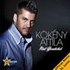 Kökény Attila - Rád Gondolok (Dj Junior Official Remix) FREE DOWNLOAD