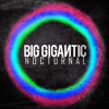 Big Gigantic - Its Goin Down
