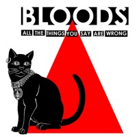 Bloods All The Things You Say Are Wrong Artwork