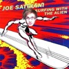 Surfing With The Alien Cover