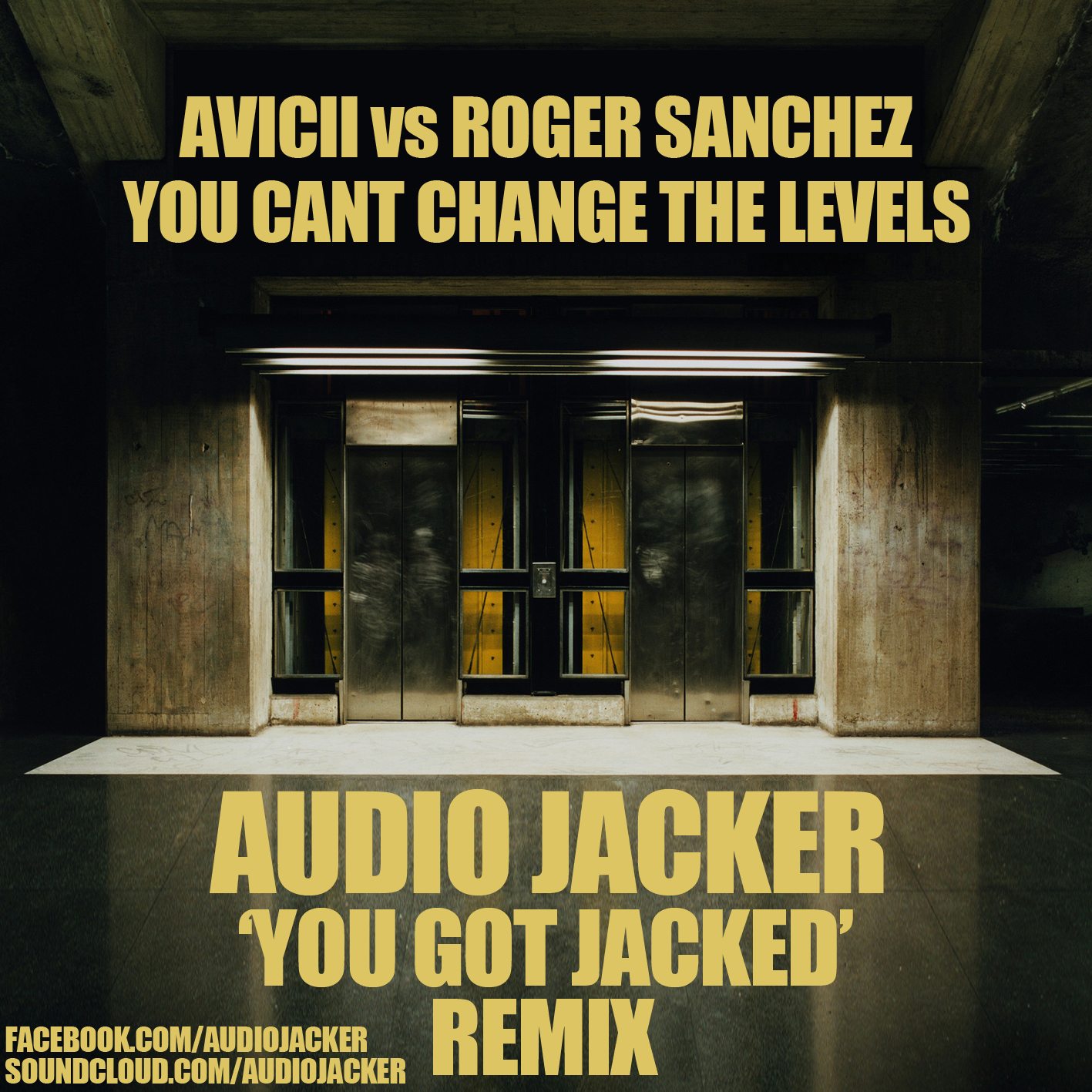 Avicii vs Roger Sanchez - You Cant Change The Levels (Audio Jacker 'You Got Jacked' Remix Edit)