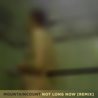 James Blake Not Long Now (Mountaincount Remix) Artwork