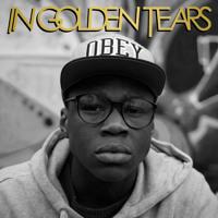 In Golden Tears Under The Balance (Philip Fuchs Remix) Artwork