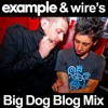 Example & DJ Wire present: The Big Dog Blog Mix (2010) (DOWNLOAD)