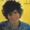 Tim Buckley - Song to the siren cover