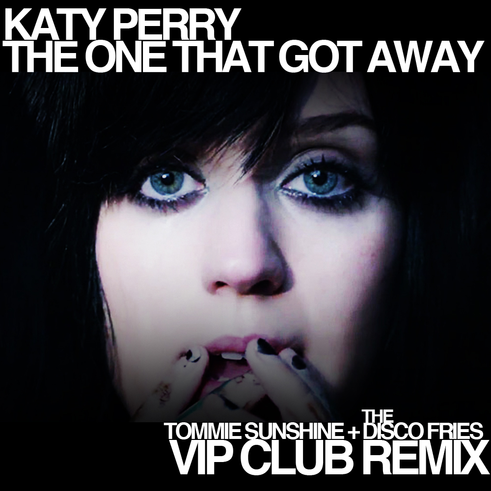 The One That Got Away Katty Pery