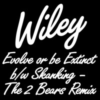 Wiley I'm Skanking (The 2 Bears Remix) Artwork