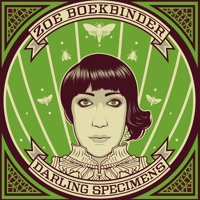 Zoe Boekbinder Hollow Bones Artwork