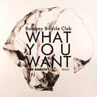 Bombay Bicycle Club What You Want (THE DARCYS Remix) Artwork