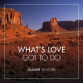 Tina Turner What's Love Got To Do (Zimmer Rework) Artwork