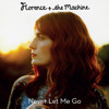 Florence + The Machine - Never Let Me Go (Blood Orange Remix)