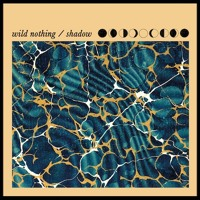 Wild Nothing Shadow Artwork