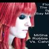 Spectrum (MiSha Skye & Robbie Riviera VS. Calvin Harris ReWork) Preview