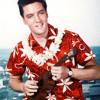 Elvis Presley -All Shook Up