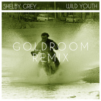 Listen to a new remix song Wild Youth (Goldroom Remix) - Shelby Grey