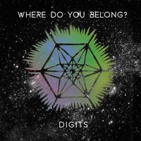 Digits Where Do You Belong Artwork