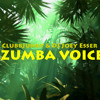 Gregor Salto ft. Otto Knows - Azumba Voices (ClubbJunky & Joey Esser Bootleg) *FREE DOWNLOAD*