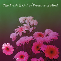 The Fresh & Onlys Presence Of Mind Artwork