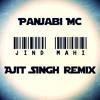Panjabi MC - Jind Mahi (Ajit Singh Remix)    KINGH