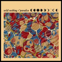 Wild Nothing Paradise Artwork
