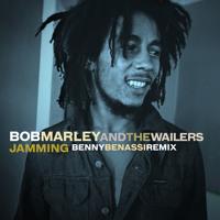 Bob Marley Jammin' (Benny Benassi Remix) Artwork