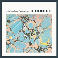 Wild Nothing Counting Days Artwork