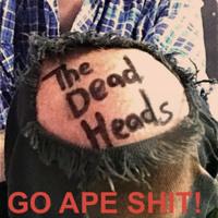 The Dead Heads When I'm Dead Artwork