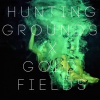 Hunting Grounds Flaws (Gold Fields Remix) Artwork