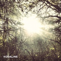 Kodaline All I Want (Everything Everything Remix) Artwork