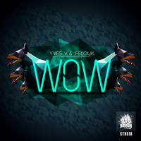 Listen to a new electro song WOW - Felguk vs Yves V