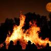 Anything Goes | Bonfire Music | Big Smo, Alexander King, Jon Conner