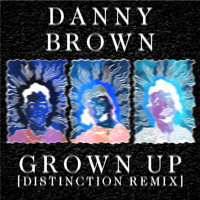 Danny Brown Grown Up (Distinction Remix) Artwork
