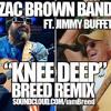 Zac Brown Band ft Jimmy Buffet Knee Deep Breed Remix