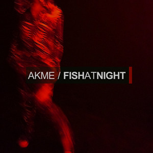 Akme - The Time Is Now [Fish At Night EP] RSPDIGI123 by Akme aka FishAtNight